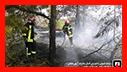 هشدار سازمان آتش نشانی در پی استقرار هوای گرم و پیشگیری از آتش سوزی علفزارها و جنگل ها